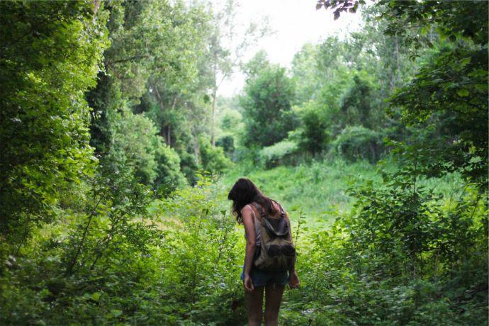 las, dziewczyna, plecak, drzewa, krzaki, trawa, słońce
